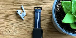 Apple Watch straps business + stock