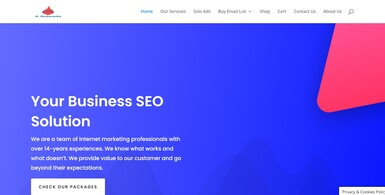 Fully Outsourced SEO Agency