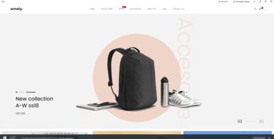 Fashion Dropshipping Starter Website