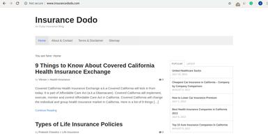 Insurance Dodo