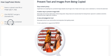 Text and Image Protection Tool