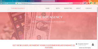 The Bot Agency